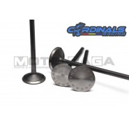 Cardinals Racing Oversized Valves - Suzuki Raider 150r/FX125 - (22in/20ex)